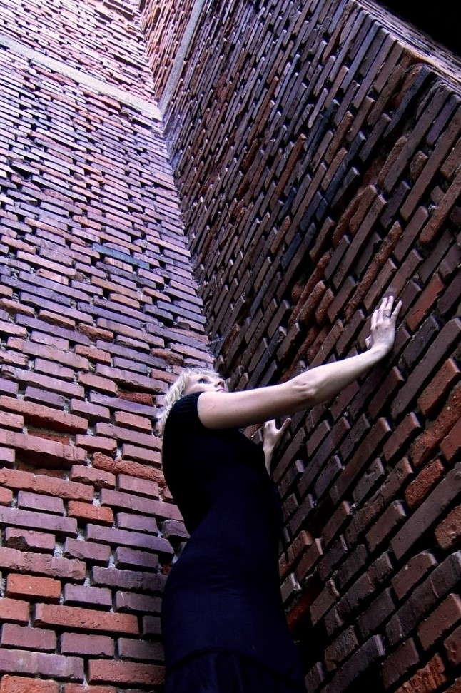 FamAcademy - Wall with woman trapped